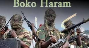 Angered by capture of their Commanders, Boko Haram target homes in Adamawa