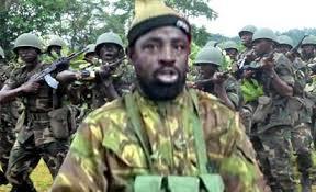 Second Abubakar Shekau killed