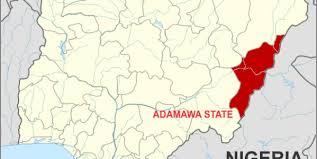 Adamawa PDP zoning no longer binding – Madaki