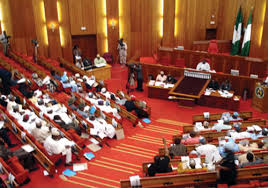 Assembly Retains Immunity For President, Governors; Confer Immunity On Themselves Too
