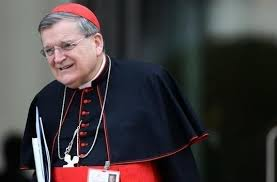 Cardinal Burke attacks Pope Francis, says   Catholic Church under him is 'a ship without a rudder'