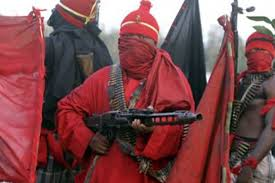 27 reportedly killed as gunmen invade Kaduna village