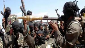Boko Haram has about 6000 fighters: US intelligence
