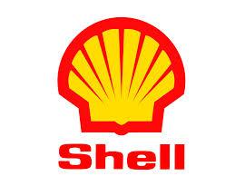 Court reverses seizure of oil block from Shell, Eni