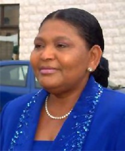 Senate Committee probes sale of Cecilia Ibru's forfeited assets