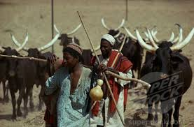 Fulani herdsmen go wild in Ebonyi community, kill 4