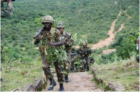 Land mines hamper military's final push in Sambisa Forest
