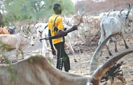 Sevferal persons killed as suspected herdsmen attack Benue communities again