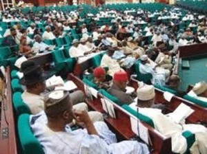 We'll conduct thorough investigation of NDDC boss' sack: Reps C'ttee