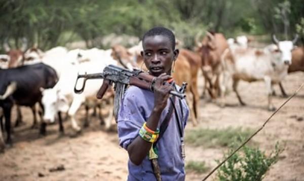Armed herdsmen kill Benue varsity graduate, 32 others