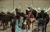 Two killed, 19 missing following invasion of Enugu community by Fulani herdsmen