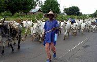 Fulani herdsmen invade Enugu community, kill two; raze down houses