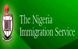 FG introduces liberalised online visa on arrival for  foreign investors,