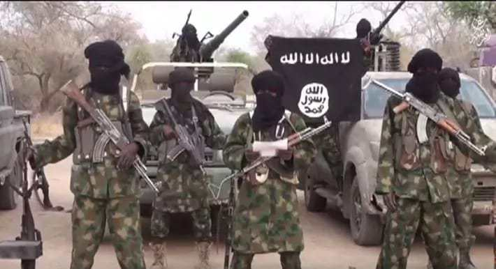 Boko Haram ambushes vehicle convoy, kills 30 in Borno