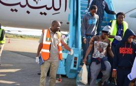 1,317 Nigerians returned from Libya in 10 days: NEMA