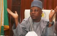 Borno State facing serious challenges following resurgence of Boko Haram activities: Gov Shettima