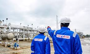 Huge tax expenses drag down Seplat's profit by 44.7%