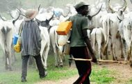 South-East govs, Ortom, Ishaku, others reject FG's Ruga settlements for herdsmen