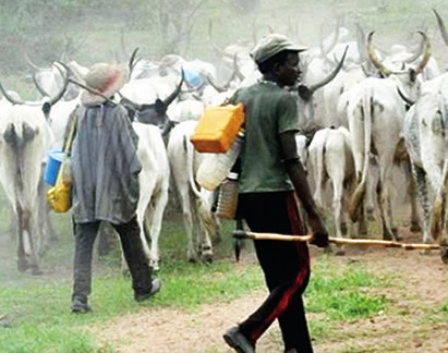Buhari backs open grazing as practised in 1st Republic