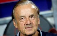 Why NFF can't sack Rohr: Report