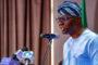 Adegboruwa faults Fashola 'discovery' of video camera at Lekki toll gate