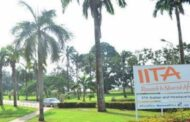 40,000 young people in  Nigeria to benefit from Young Africa Works-IITA project training programme