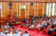Senate passes Bill prohibiting discrimination between BSc/HND holders
