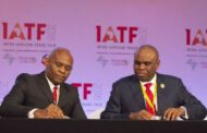 Tony Elumelu's TNOG obtained  $250m facility from Afriexim bank  to acquire 45% stake in OML17 onshore oil field