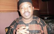 Here are the 'cows', by Yinka Odumakin