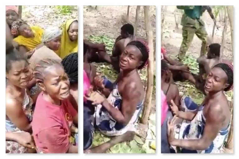 Weak and tattered, 29 students forestry college, Kaduna freed