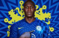 Lukaku injury mars Chelsea's rout of Malmo